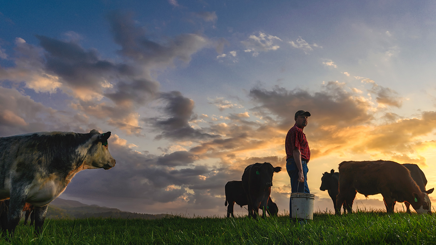 Cattlemen and the environment sustainability