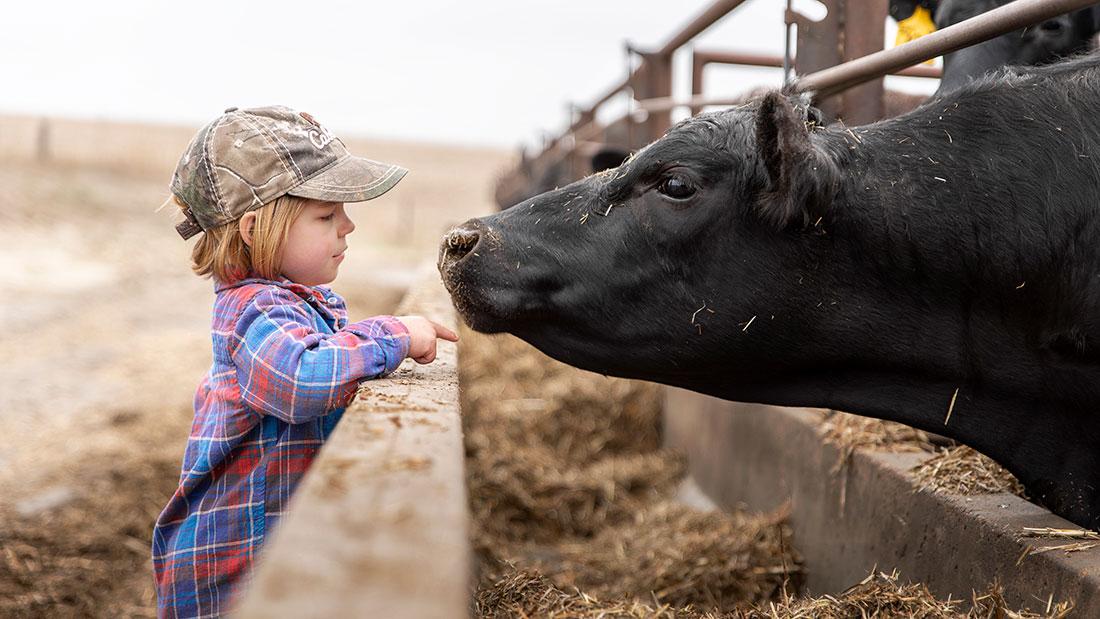The Kraffts - Family Beef Farm in Kansas