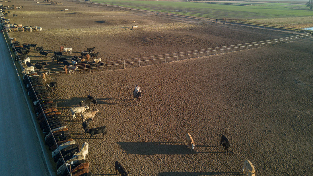 drone shot DJI pen rider feedlot kansas